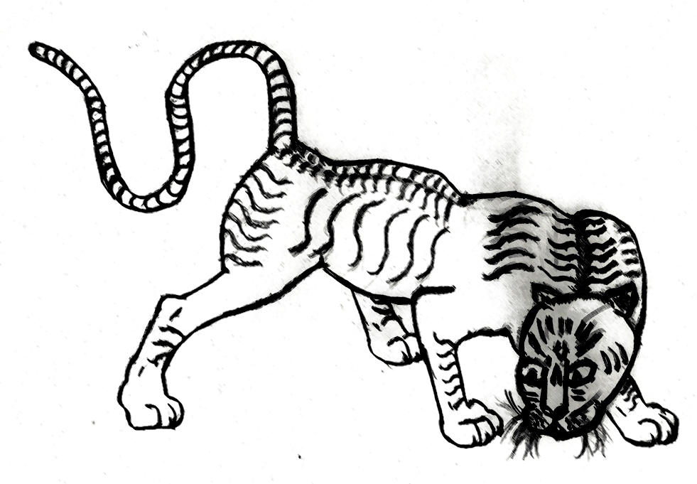 Drawing of a tiger in a stylized manner.