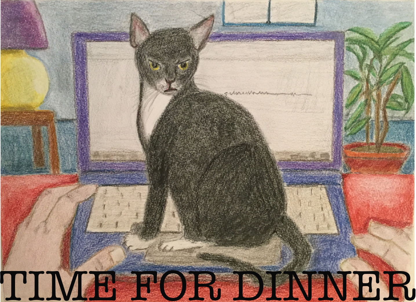 Drawing of a cat on a laptop, looking annoyed.